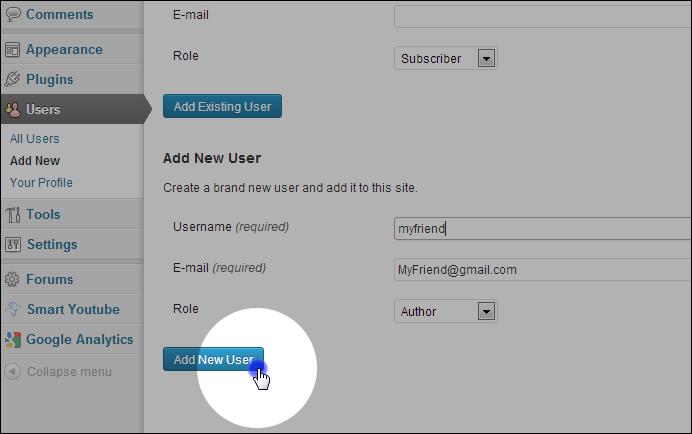 Click 'Add New User'