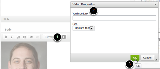 An image of the video properties screen, with the body labeled 1, the youtube link labeled 2, and the ok button labeled 3.