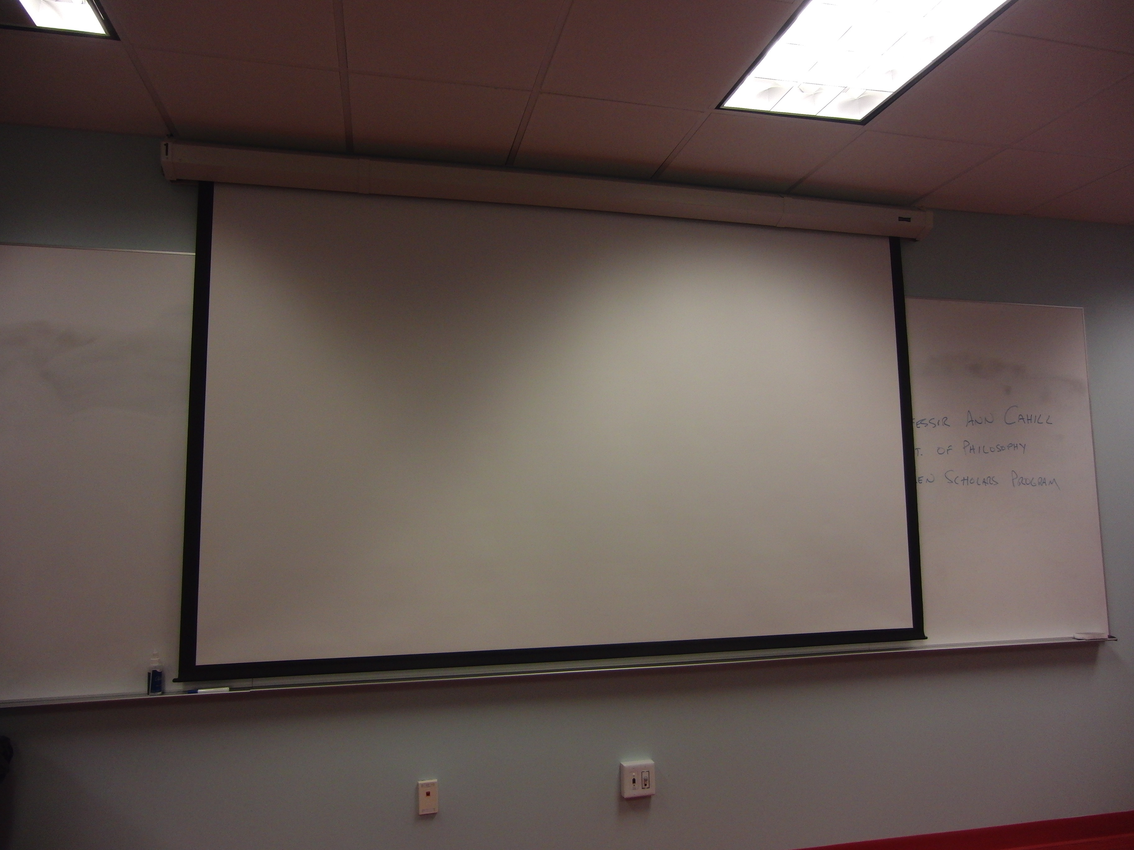 Photo of the front projection screen lowered