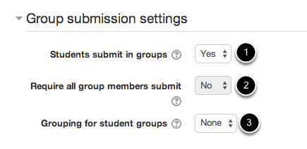 An image of group submission settings, with numbers corresponding to the text below the image.
