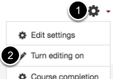 An image of the gear icon (1) and the turn editing on option (2).