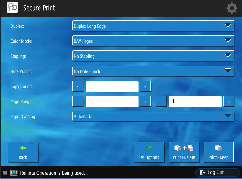 This is an image of the options screen users can adjust when using the printer.