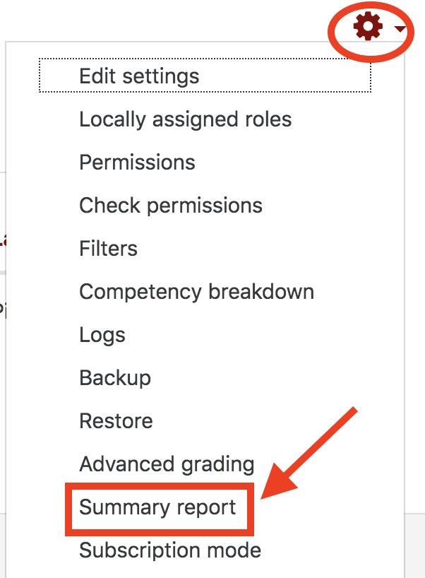 gear icon summary report option