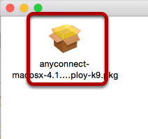 An image of the PKG file