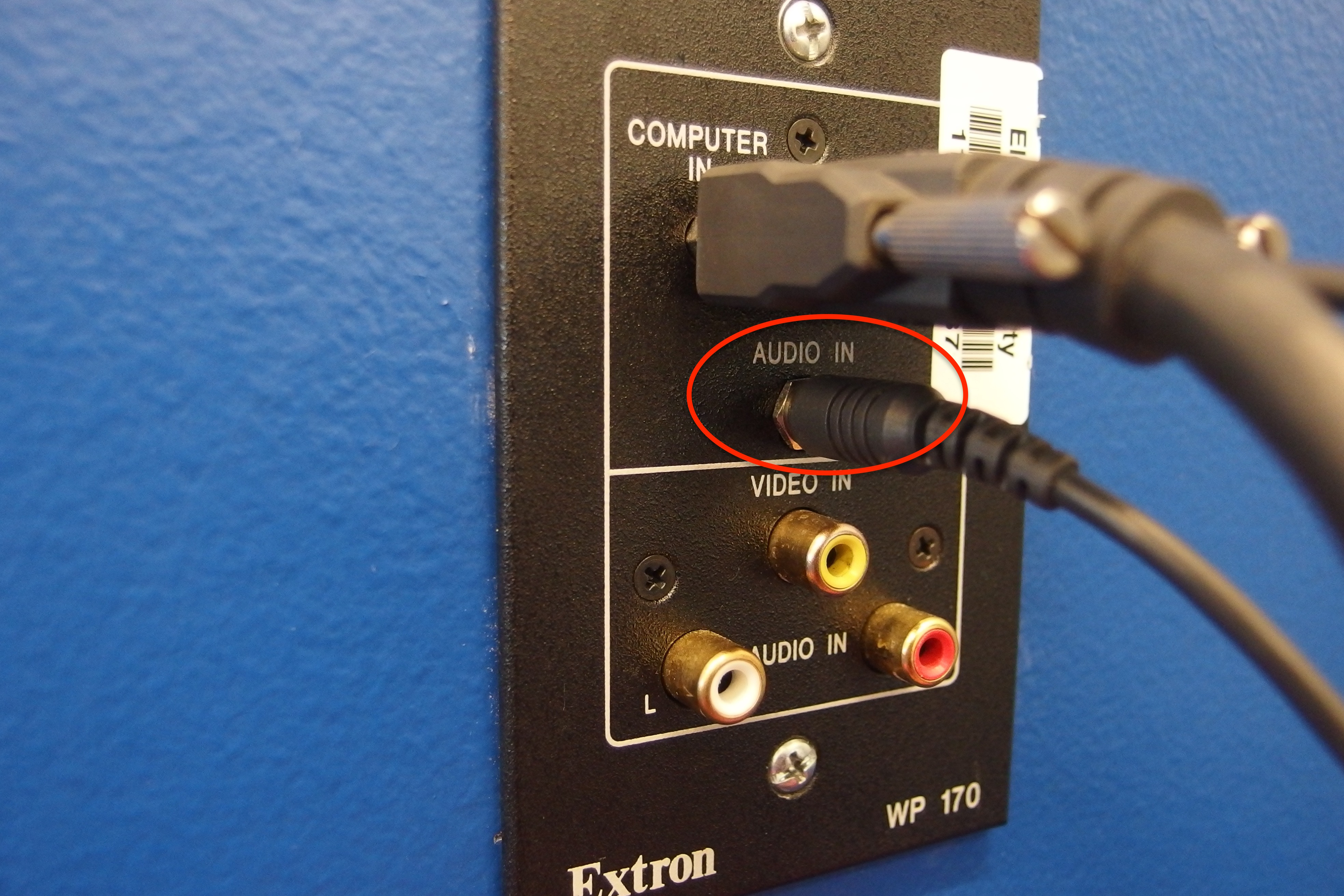 A photo of the 3.5mm cord plugged into the wall plate.